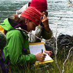 The 4th Annual Schofield Bryophyte & Lichen Foray