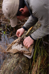 A Step Closer to Releasing Endangered Oregon Spotted Frogs