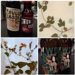 The Biodiversity of Beer