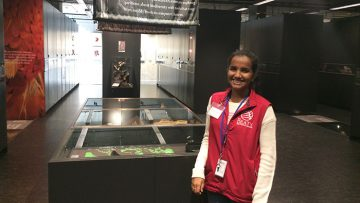 My Year Volunteering at the Museum