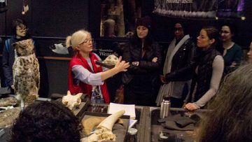 Fall into new tours at the Beaty Museum