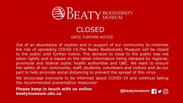 The Beaty Biodiversity Museum is temporarily CLOSED